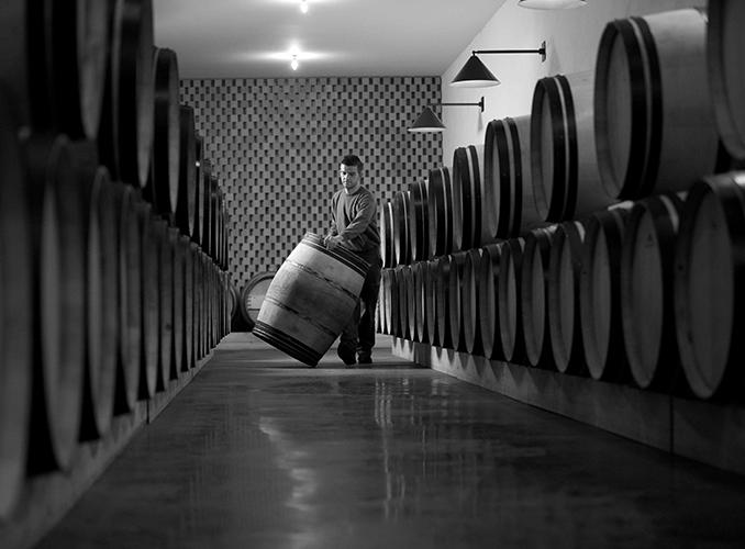 <p>In the Barrel Hall of Château Clerc Milon.</p>
