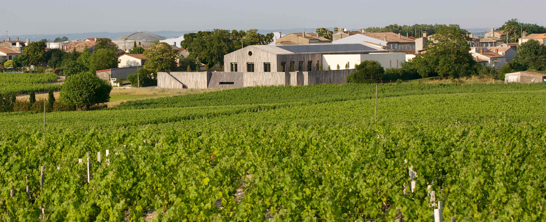 Château Clerc Milon now has 40 hectares (100 acres) of vines in the North-East of Pauillac appellation