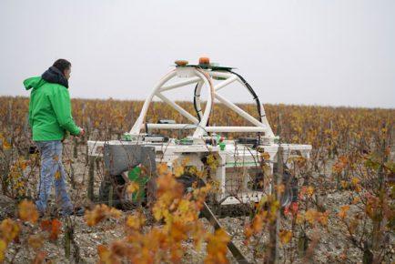 TED, prototype de robot adapté aux vignes étroites